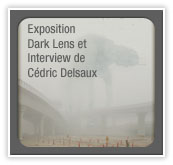 Pave_expo_delsaux2010