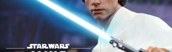 Hot Toys : Luke Skywalker ANH 1/6 Scale Movie Masterpiece Figure