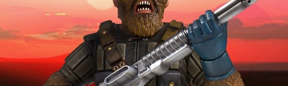 Gentle Giant – Chewbacca McQuarrie Concept Mini Bust