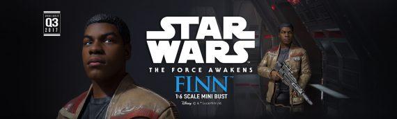 Gentle Giant : Star Wars The Force Awakens Finn Mini-Bust