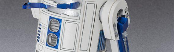 S.H Figuarts : R2-D2 & C-3PO