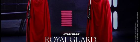 Hot Toys – Royal Guard Sixth Scale Figure
