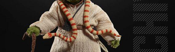HASBRO – Les figurines The Black Series Archives se dévoilent