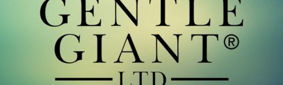 Gentle Giant : A vous de choisir le prochain Mini-Buste Star Wars !