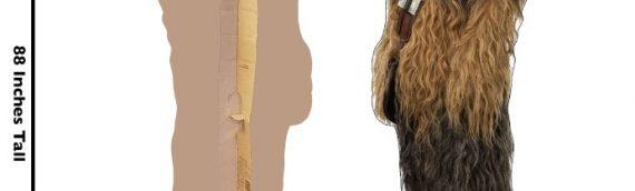 Les nouveaux Stands up pour The Rise Of Skywalker, The mandalorian et Jedi Fallen Order