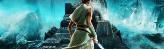 Star Wars – The Rise of Skywalker : Premier poster d'une série par Adam Stothard