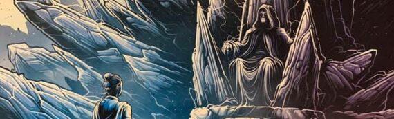 The Rise of Skywalker – Quatrième et dernière affiche IMAX de Dan Mumford