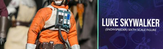 HOT TOYS – Luke Skywalker ESB Pilote Sixth Scale Figure