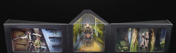 HASBRO dévoile un peu plus le set exclusif The Black Series Endor Premium Set