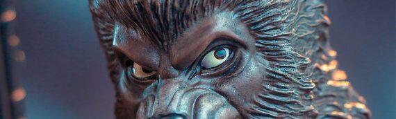 Gentle Giant – Zoom sur le mini-buste de Lak Sivrak