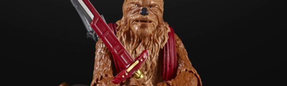 Hasbro – TBS : Un wookie rejoint la collection Gaming Greats