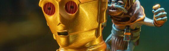 Gentle Giant : Le mini-buste de C-3PO et Babu en version de production